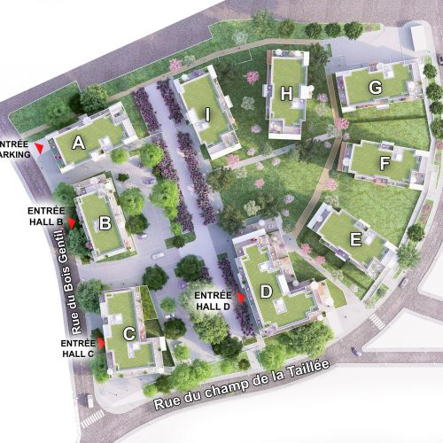 logement neuf plan Grand Angle - Annecy